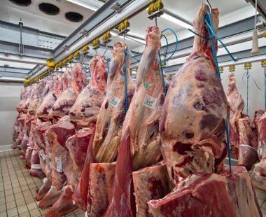 Lavorazione Carni
